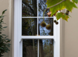 Hung Windows - canpro window replacement companies